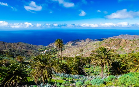 Palm tree valley white clouds blue sky coast sea view mountains, Alojera, La Gomera, Canary Islands